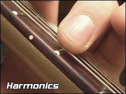 Playing a harmonic on a guitar