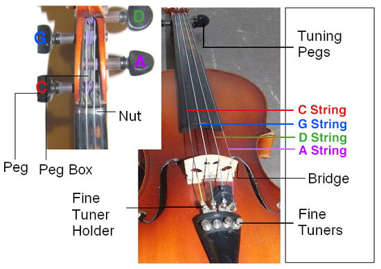 How To String A Viola